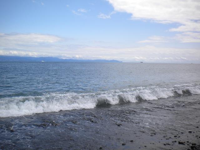 三保半島の海~