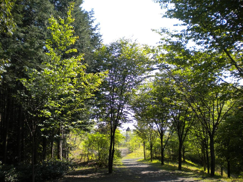 休日記[4] – 3.智者の丘公園