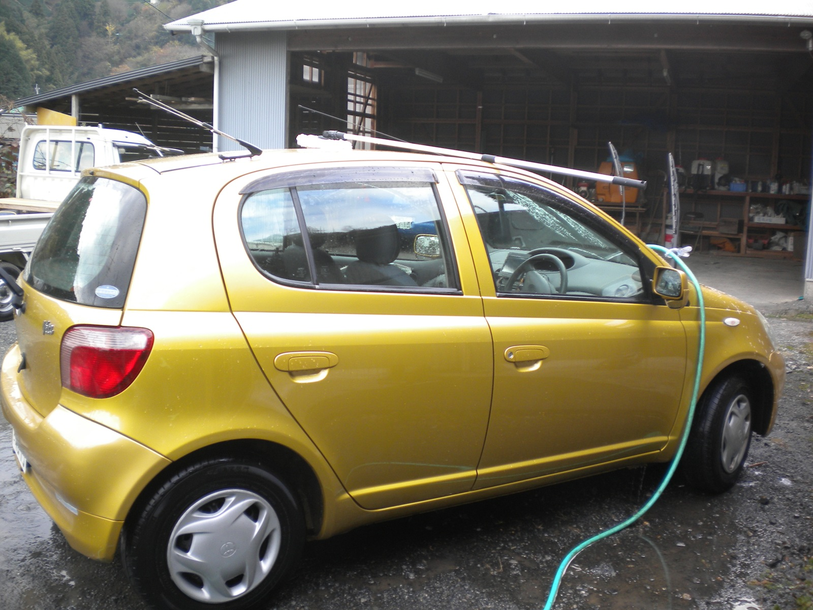 洗車:101219