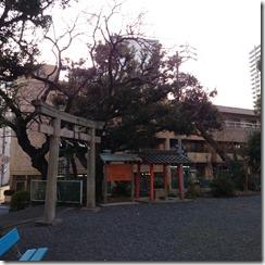 2014-02-25-16-03-27_photo