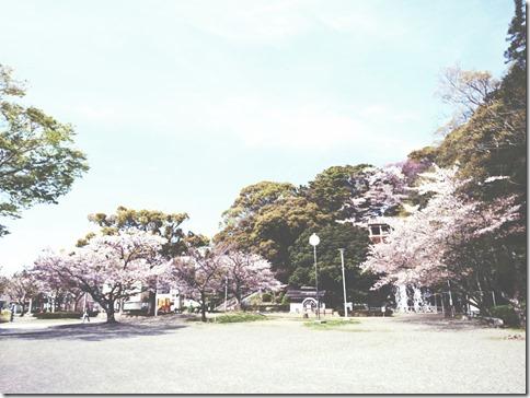 2014-04-07-13-47-45_deco