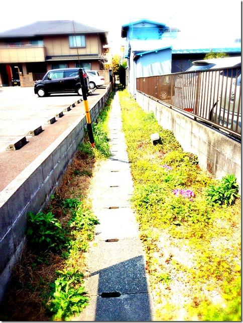 2014-04-10-12-49-01_deco